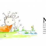 Noa-Tovervijver-inhetgras