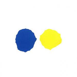 blauwtje-en-geeltje